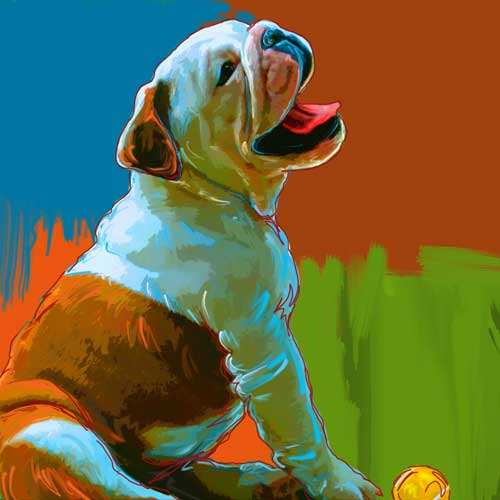 bulldog puppy art