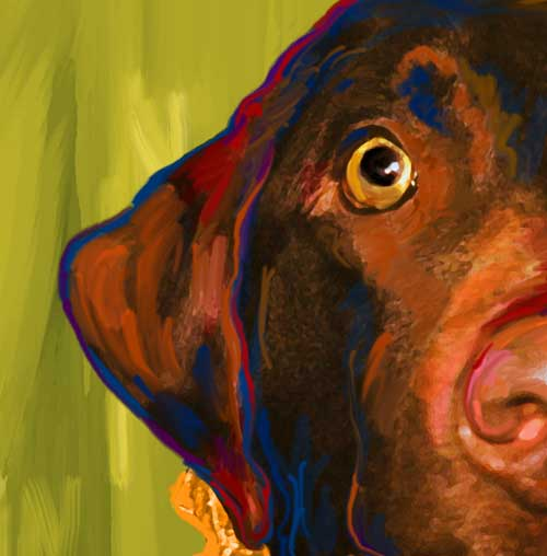 Chocolate Lab, Framed Art Posters and Prints at Art.com