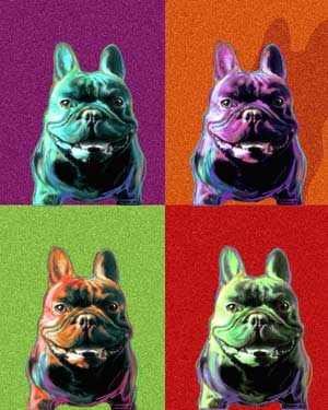 french bulldog pop art print