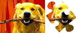 golden retriever game