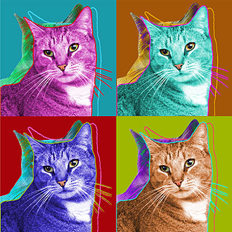 tabby cat warhol art